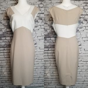 CK Stealth Dress